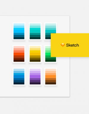 Sketch Auto-Color System